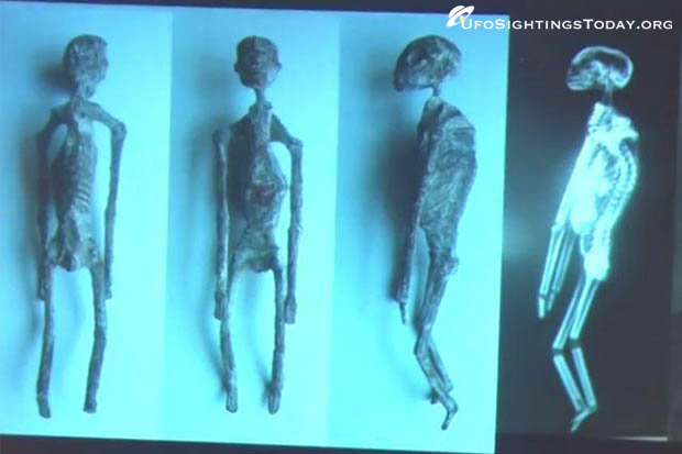 mummies of nazca x-ray
