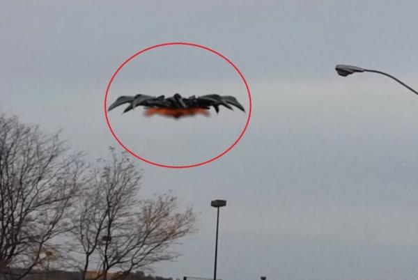 alien spaceship, ufo hoax