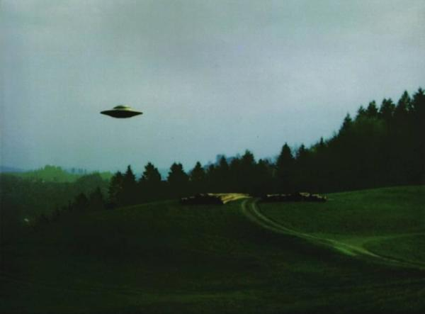 ufo sighted above the forest